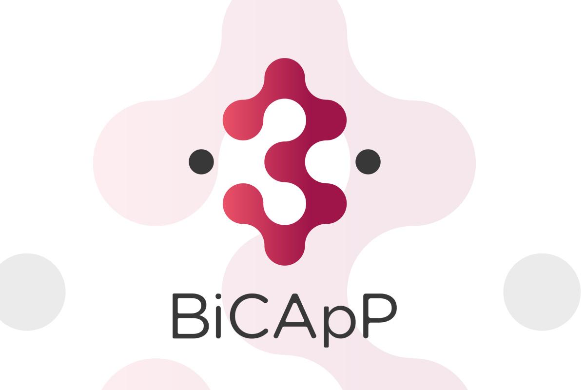 logo bicapp